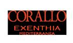 Corallo Exenthia Mediterranea