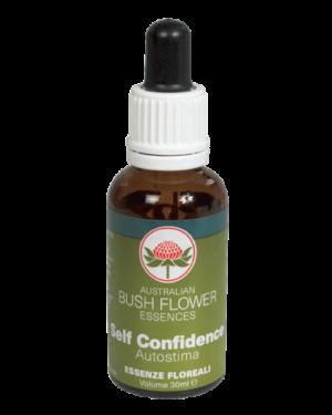 bush flower self-confidence