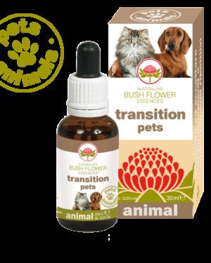 transition pets